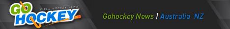 Go Hockey banner